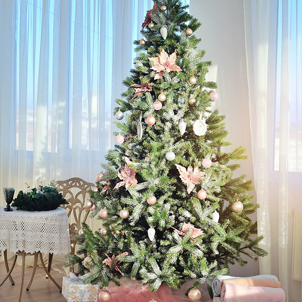 Christmas Tree Care in Edmonton